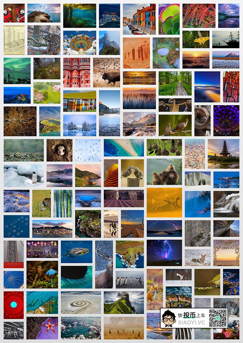 1200张精选「必应」壁纸 + 官方每日壁纸软件 第1张