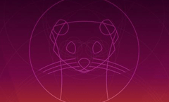 体验最流行的免费 Linux 系统「Ubuntu」20.04 LTS 正式版