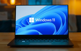 老电脑超简单安装 WINDOWS 11 工具,可自动跳过 TPM 2.0 限制
